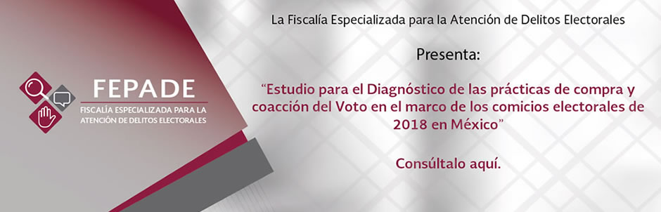 Go to Estudio-Diagnostico-Compra-Voto