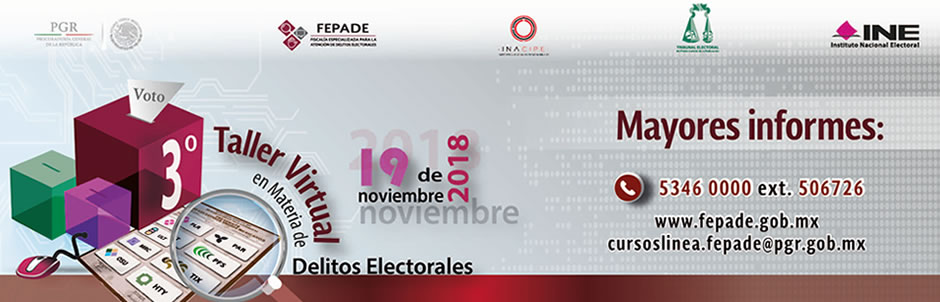 Go to 3 Taller Virtual Delitos Electorales
